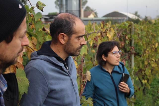 LuccaBiodinamica cresce. Da domenica la rete ha un nuovo socio,VILLA PIEROTTI – BAGNESCHI AGRITURISMO